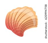 Scallop Seashell  An Empty...