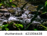 creek in the rain forest ... | Shutterstock . vector #621006638