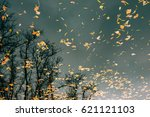 autumn leaves in the water.... | Shutterstock . vector #621121103