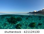 translucent lagoon of moorea ... | Shutterstock . vector #621124130