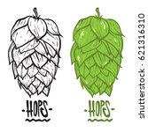 hops vector visual graphic... | Shutterstock .eps vector #621316310