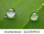 water dot | Shutterstock . vector #621354914