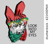 vector owl with glasses and... | Shutterstock .eps vector #621430964