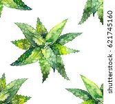 watercolor aloe vera pattern.... | Shutterstock . vector #621745160