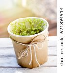 parsley seedlings in a pot on a ... | Shutterstock . vector #621894914