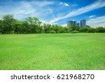 green grass field in park at...   Shutterstock . vector #621968270