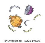 hand drawn onion isolated on... | Shutterstock .eps vector #622119608