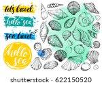 set vector seashells and... | Shutterstock .eps vector #622150520
