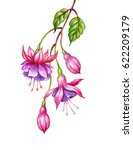 Watercolor Floral Botanical...