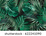 tropical palm leaves  jungle... | Shutterstock .eps vector #622241090