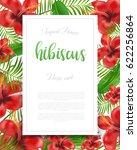 summer colorful hawaiian flyer...   Shutterstock .eps vector #622256864