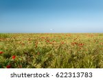 view at uncultivated field with ...   Shutterstock . vector #622313783