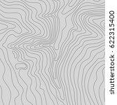 topographic map background... | Shutterstock .eps vector #622315400