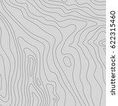 topographic map background... | Shutterstock .eps vector #622315460