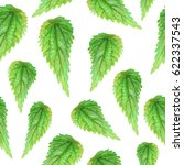 abstract nettle leaves ... | Shutterstock .eps vector #622337543