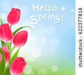 postcard with tulips  | Shutterstock . vector #622377818