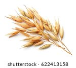 Oat Plant  Isolated On White...