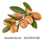 Branch With Argon Nuts And...