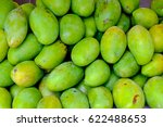 unripe green mango fruits close ... | Shutterstock . vector #622488653