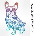 vintage style beautiful bulldog ... | Shutterstock .eps vector #622496774