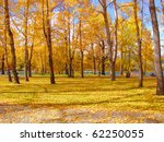 Yellow fall leaves blanketing the ground of an urban forest - stock photo