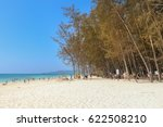 on the beach at bamboo island   ... | Shutterstock . vector #622508210