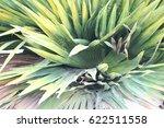 green leaves    Shutterstock . vector #622511558