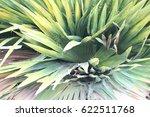 green leaves    Shutterstock . vector #622511768