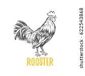 rooster. element for design ... | Shutterstock . vector #622543868