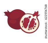 pomegranate fruit vector... | Shutterstock .eps vector #622556768