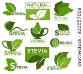 stevia sweetener sugar... | Shutterstock .eps vector #622557026