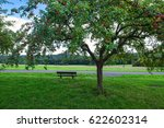 orchard in hesse | Shutterstock . vector #622602314