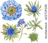 Set Of Watercolor Blue Flowers...