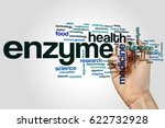 Small photo of Enzyme word cloud concept on grey background.