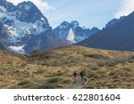 national parks in chile  ... | Shutterstock . vector #622801604