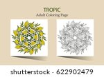 round vector ornament with... | Shutterstock .eps vector #622902479