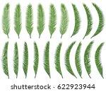 exotic nature vector set ... | Shutterstock .eps vector #622923944