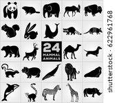 Twenty Four Mammalian Animals...
