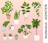 set of decorative house plants. ... | Shutterstock .eps vector #622967378