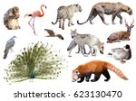 set of various asian isolated... | Shutterstock . vector #623130470