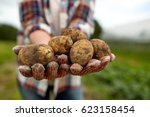 farming  gardening  agriculture ... | Shutterstock . vector #623158454