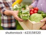 farming  gardening  agriculture ...   Shutterstock . vector #623158520