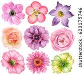 watercolor set of different... | Shutterstock . vector #623175746