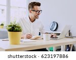 freelancer working on laptop... | Shutterstock . vector #623197886