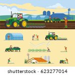 colorful farming concept with... | Shutterstock .eps vector #623277014