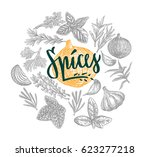 hand drawn natural spices round ... | Shutterstock .eps vector #623277218