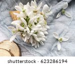 waffle cone with snowdrops on... | Shutterstock . vector #623286194