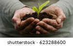 a man holds a biological sprout ... | Shutterstock . vector #623288600