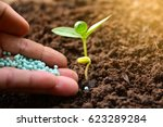 seedling concept by human hand... | Shutterstock . vector #623289284