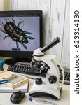 a microscope showing the... | Shutterstock . vector #623314130